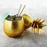 Pineapple Ice Bucket/Storage Pot - Matt Brass: Image 3