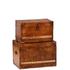 Luxury Leather Storage Trunks (Set of 2): Image 1