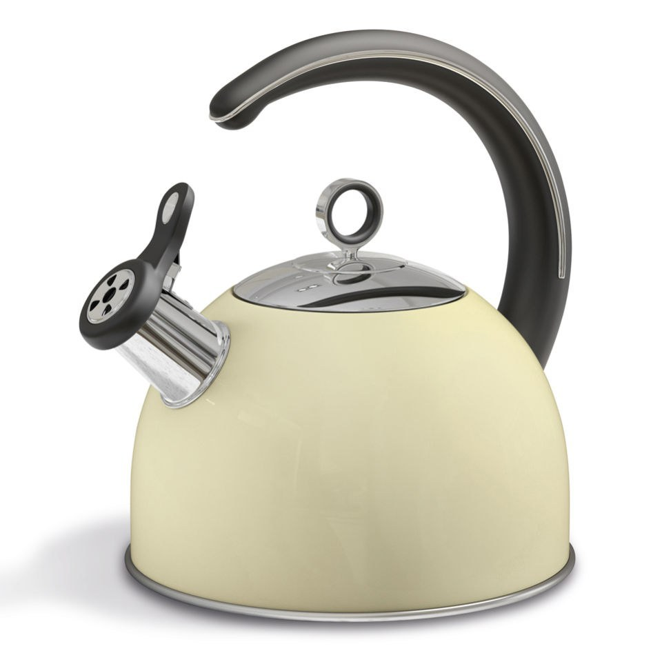 morphy-richards-46502-accents-whistling-kettle-cream-25l