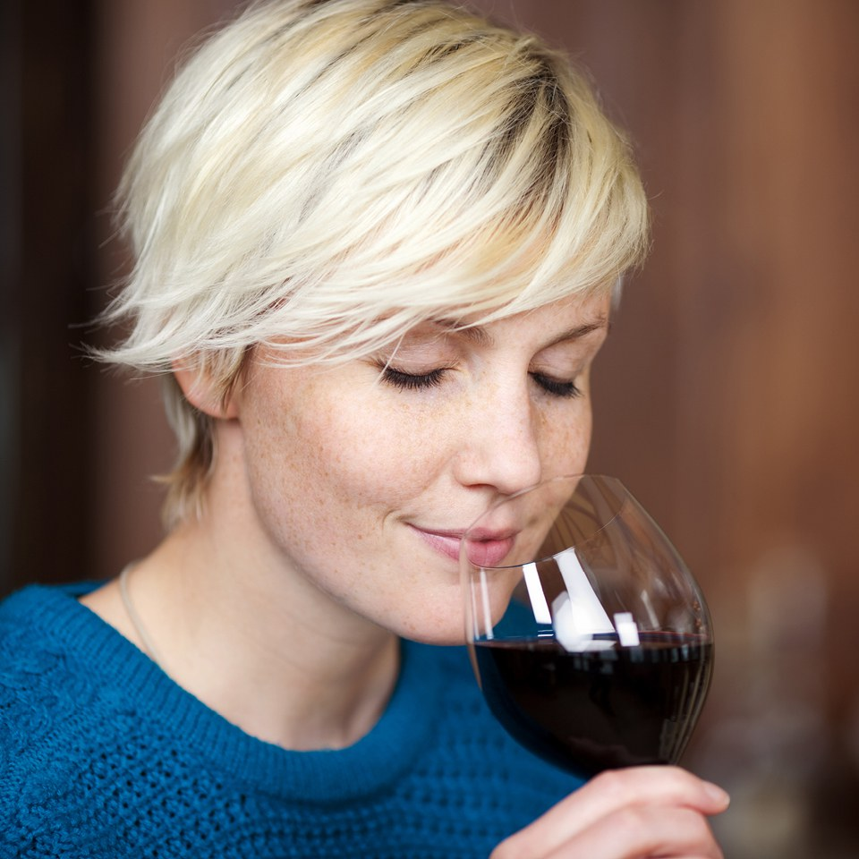 english-vineyard-tour-tasting-for-two