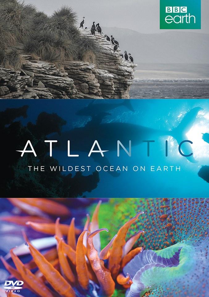 atlantic-the-wildest-ocean-on-earth