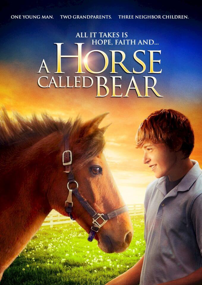 a-horse-called-bear