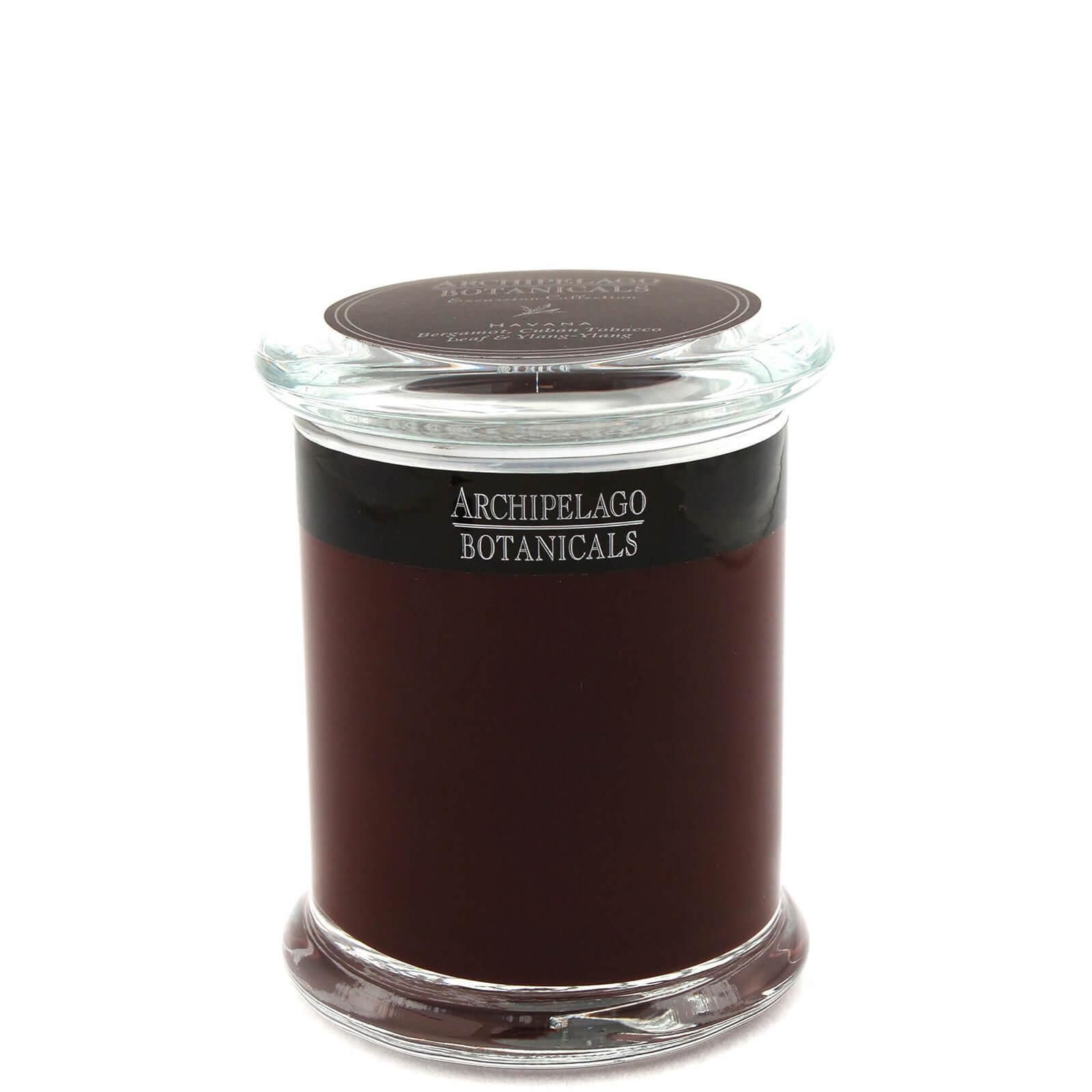 Купить Декоративная ароматическая свеча в стеклянной баночкеArchipelago Botanicals Excursions Jar Havana Candle 244г
