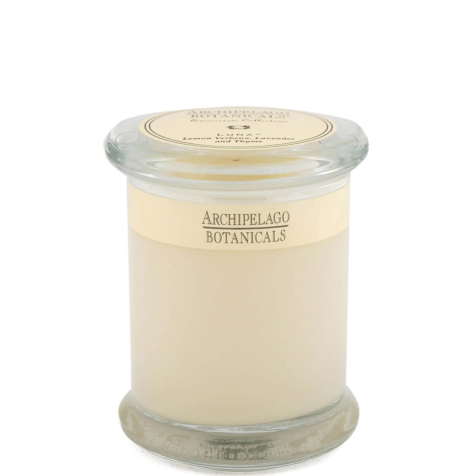 Купить Декоративная ароматическая свеча в стеклянной баночкеArchipelago Botanicals Excursions Jar Luna Candle 244г