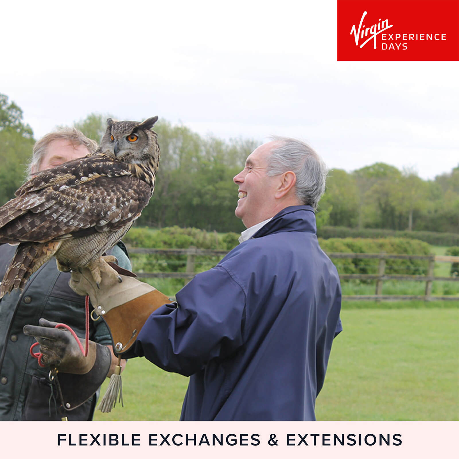 Image of Falconry Taster for Two