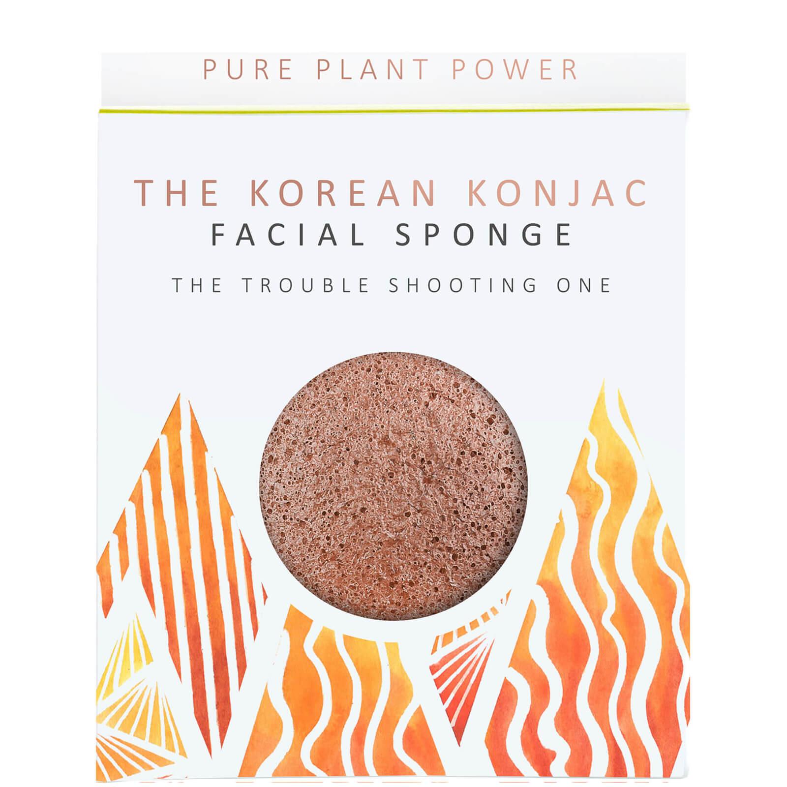 Купить Спонж для лица The Konjac Sponge Company The Elements Fire Facial Sponge — Purifying Volcanic Scoria 30 г
