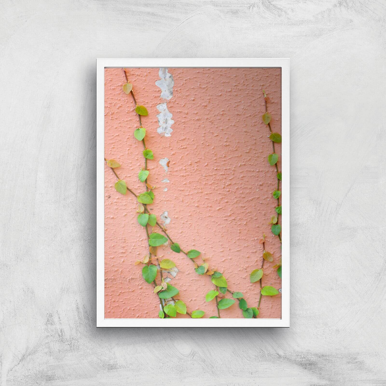 Climbing Ivy Giclee Art Print   A3   White Frame