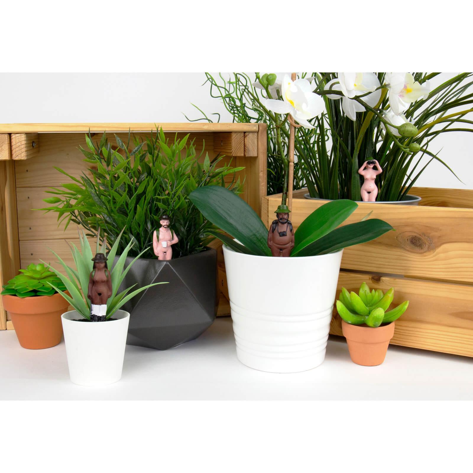 Image of Naked Ramblers - Mini Plant Pot Planters