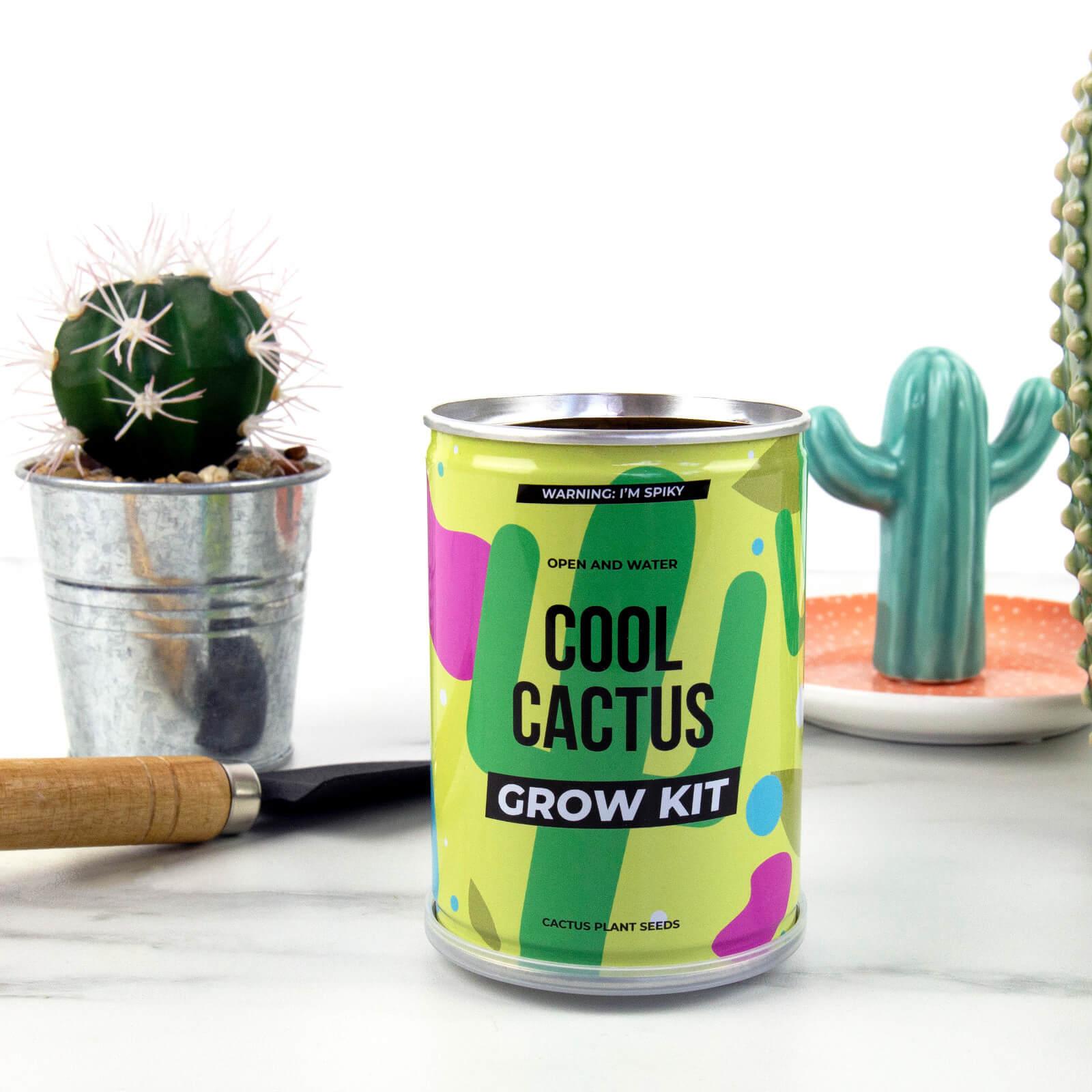 Image of Grow Tin - Cool Cactus