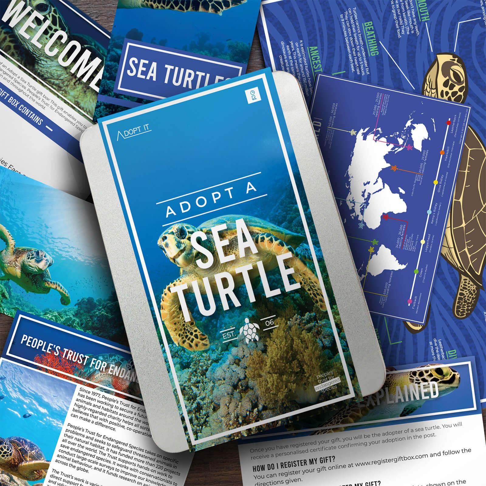 Image of Adopt a Sea Turtle Gift Tin