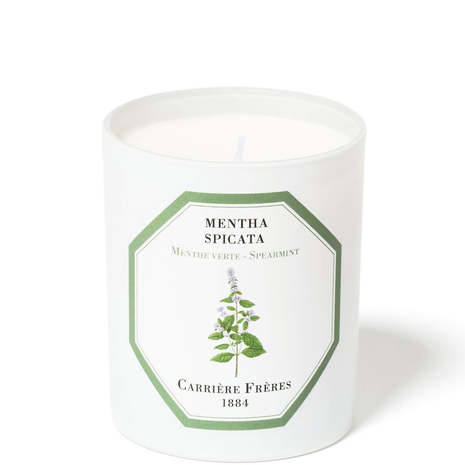 Купить Carrière Frères Scented Candle Spearmint - Mentha Spicata - 185 g