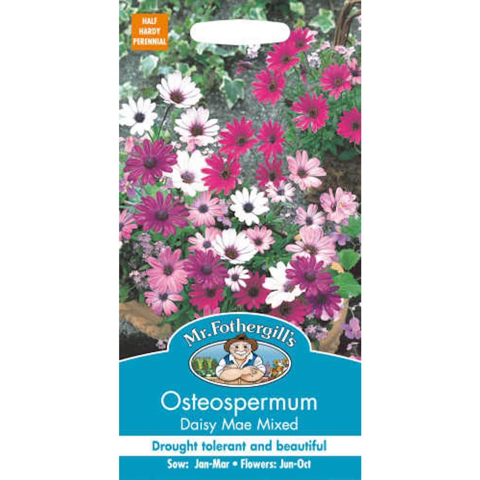 Mr. Fothergill's Osteospermum Daisy-Mae Mixed (Osteospermum Ecklonis) Seeds
