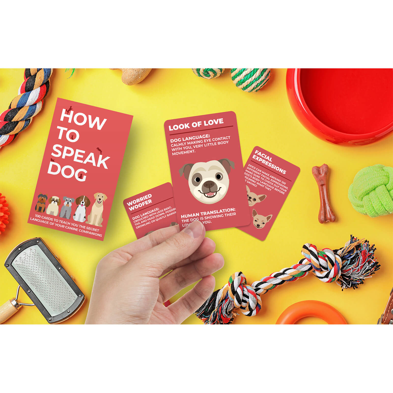 Image of How to Speak Dog Cards