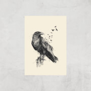 Balazs Solti Birds Flying Art Print - A3 - Print Only image