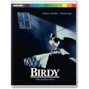 Birdy (Limited Edition)