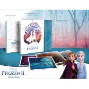 Disney's Frozen 2 - Collector's Edition Steelbook 4K Ultra HD Steelbook (Includes 2D Blu-ray)