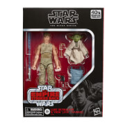 Hasbro Black Series Star Wars Luke and Yoda Deluxe 2-Pack Action Figure