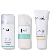 Купить Pai Skincare Cleanse & Exfoliate Bundle