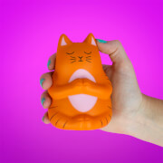 Meowditation Stress Toy