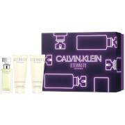 Купить Calvin Klein Eternity for Women Eau de Parfum Gift Set