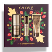 Купить Caudalie Premier Cru Christmas Set The Ritual of Absolute Youth