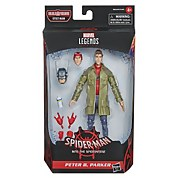 Hasbro Marvel Legends Series Spider-Man: Into the Spider-Verse Peter B. Parker