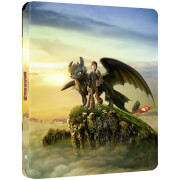 How to Train Your Dragon 2 - Zavvi Exclusive 4K Ultra HD Steelbook (Includes Blu-ray)