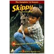 Skippy Bush Kangaroo - Seizoen 1 - Compleet