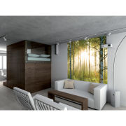 Image of Forest Scene Deco Wall Mural