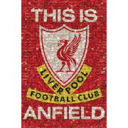 Liverpool Mosaic - Maxi Poster - 61 x 91.5cm