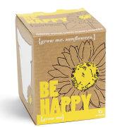 Grow Me, Sei Glücklich Sonnenblume