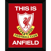 """Liverpool This Is Anfield - 16"""""""" x 12"""""""" Framed Photographic"""