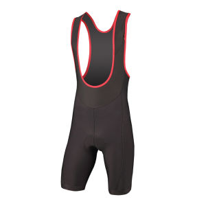 Endura Thermolite Winter Bib Shorts - Black