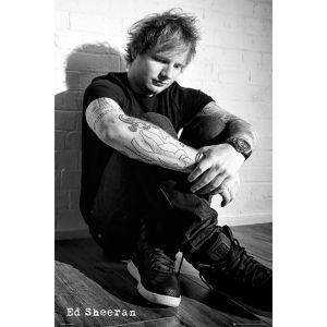 Ed Sheeran Sit - Maxi Poster - 61 x 91.5cm