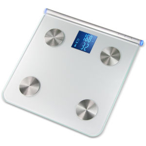 ION USB Scale Weight and Mass Tester