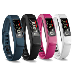 Garmin Vivofit 2 Wellness Band