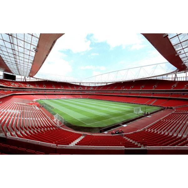 Adult legends tour of emirates stadium for two experience for Emirates stadium mural