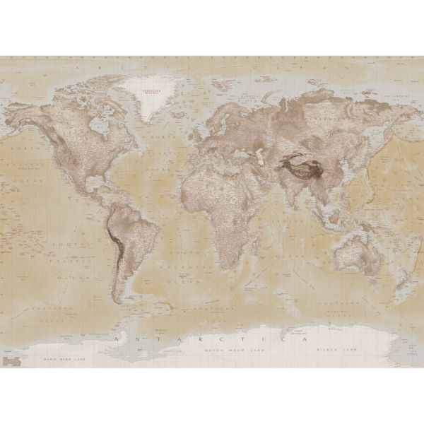 Neutral Map Wall Mural