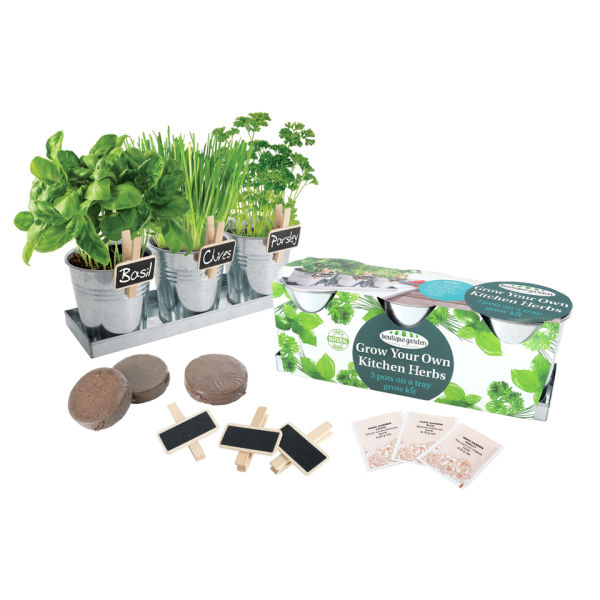 Grow Your Own Herb Kit Iwoot