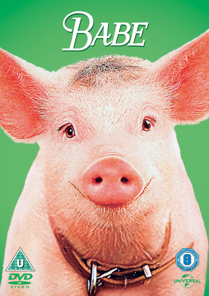 Image result for babe the pig