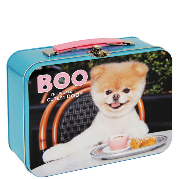 Boo the world 39 s cutest dog lunch tin iwoot for Cutest house in the world