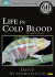 Life in Cold Blood: Image 1