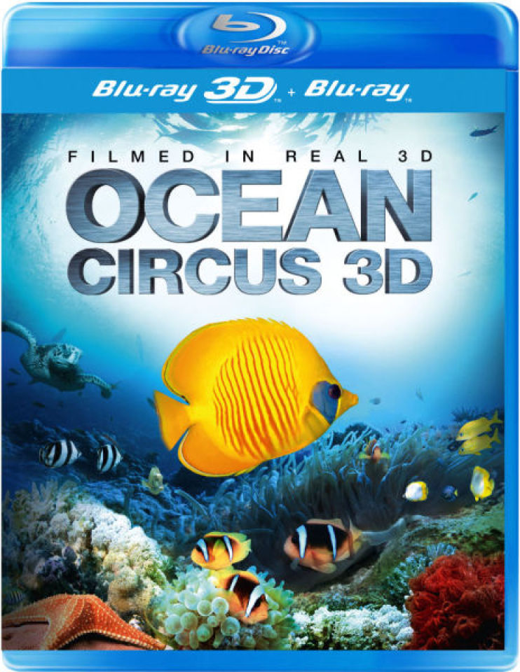 ocean-circus-3d