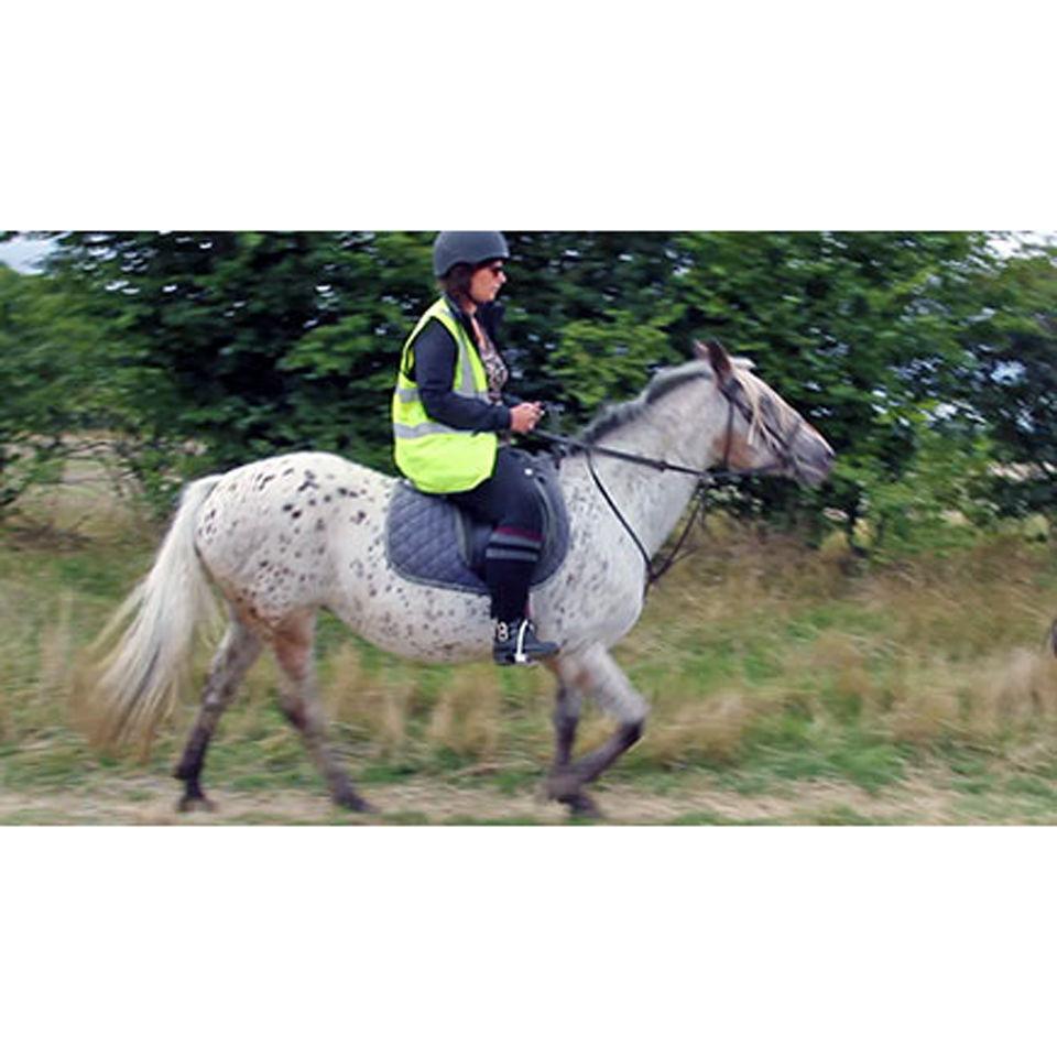 beginner-horse-riding-in-bedfordshire