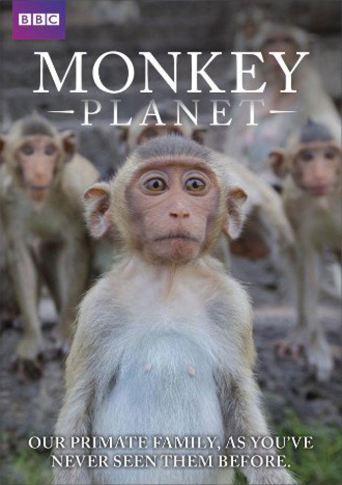 monkey-planet