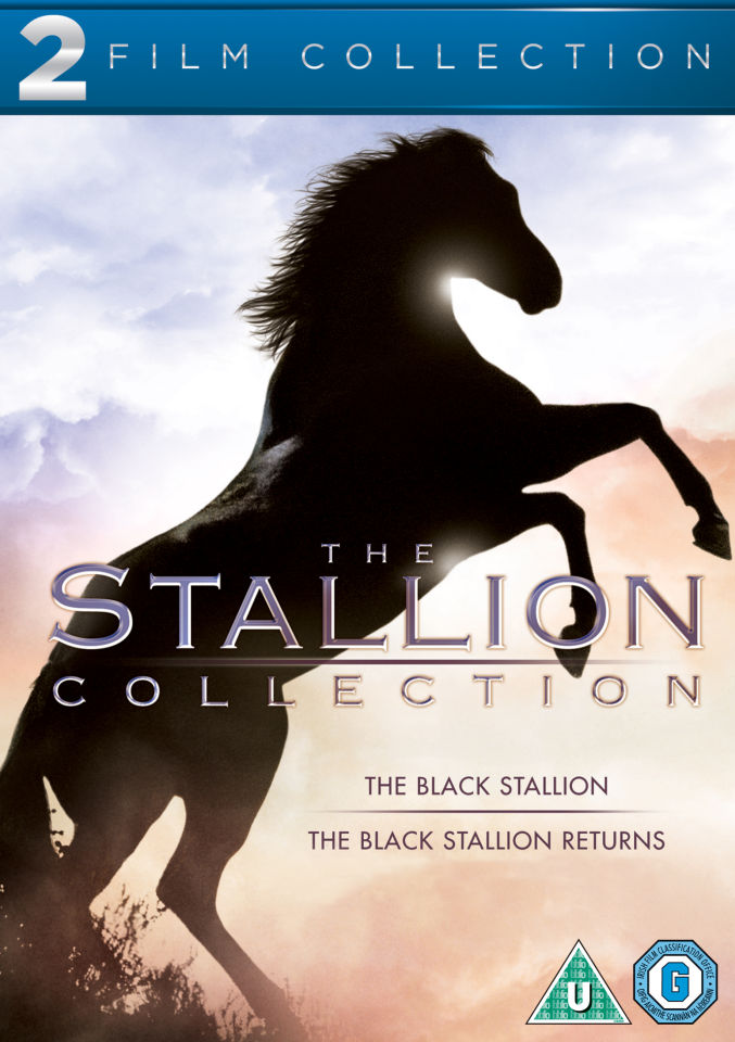 black-stallion-double-pack