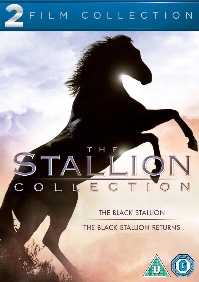 black-stallion-double-pack