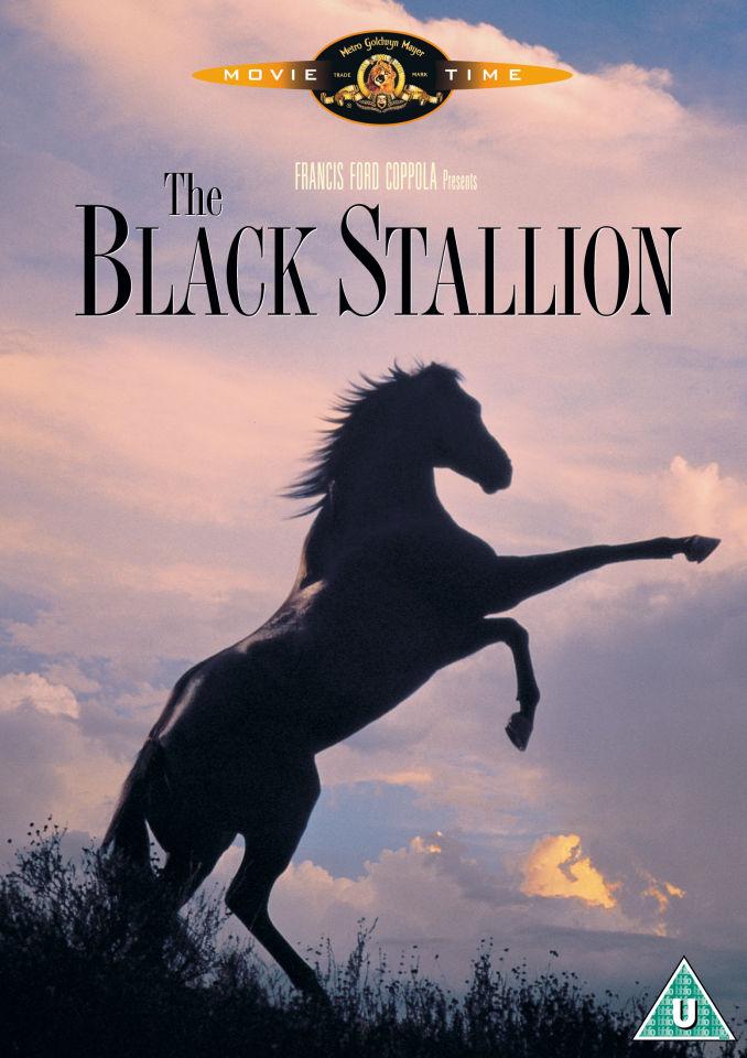 the-black-stallion