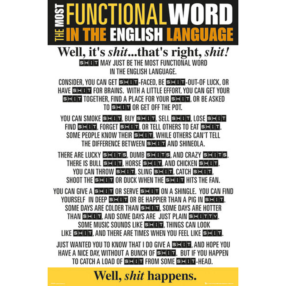 functional-word-shit-maxi-poster-61-x-915cm