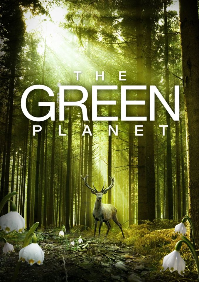 the-green-planet